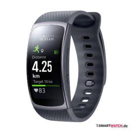Samsung Gear Fit 2 - Grau